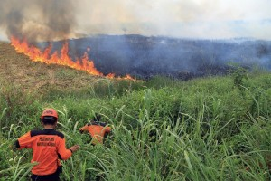 Firemen work to contain burning wildfire in Ogan Ilir, South Sumatra, Indonesia, Saturday, Sept. 5, 2015. Wildfires caused by illegal land clearing on Indonesia's Sumatra and Borneo islands often spread choking haze into neighboring countries such as Malaysia and Singapore. (AP Photo)